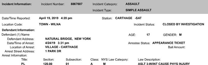 NYSP: Natural Bridge Teen Charged With Assault